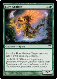Burr Grafter